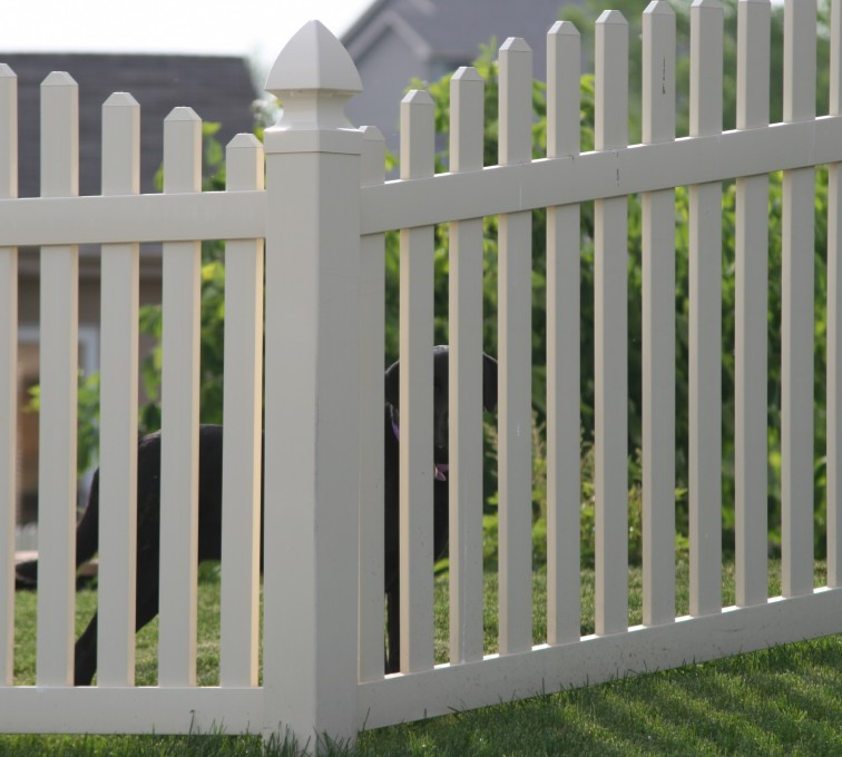 AFC Grand Island - Vinyl Fencing, 4' overscallop picket 550